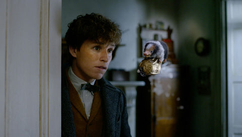Magizoologist newt scamander