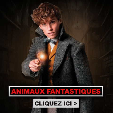 Black Friday Harry Potter Animaux Fantastiques