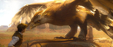 The bird thunder the fantastic animals