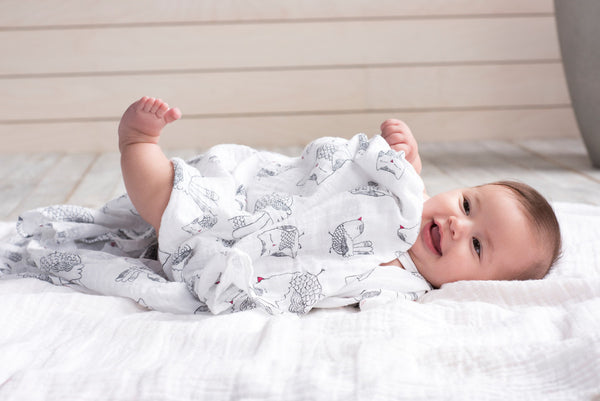 Aden and Anais Lovebird Swaddle