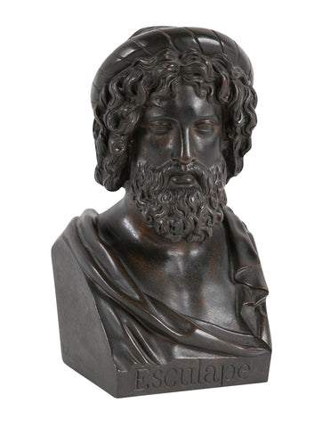Bronze Bust of Asclepius by French Sculptor Pierre Joseph Chardigny
