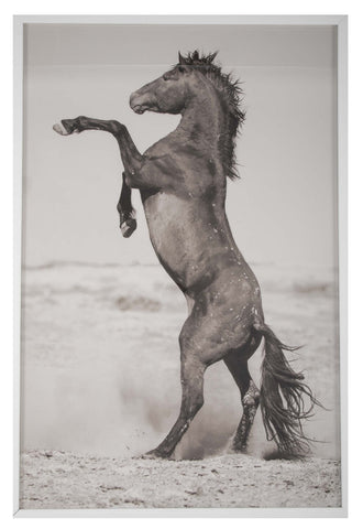 """Strength Power Peace; Great Divide - One"" Limited Edition of 5 Photographs by Kimmerle Curyl"