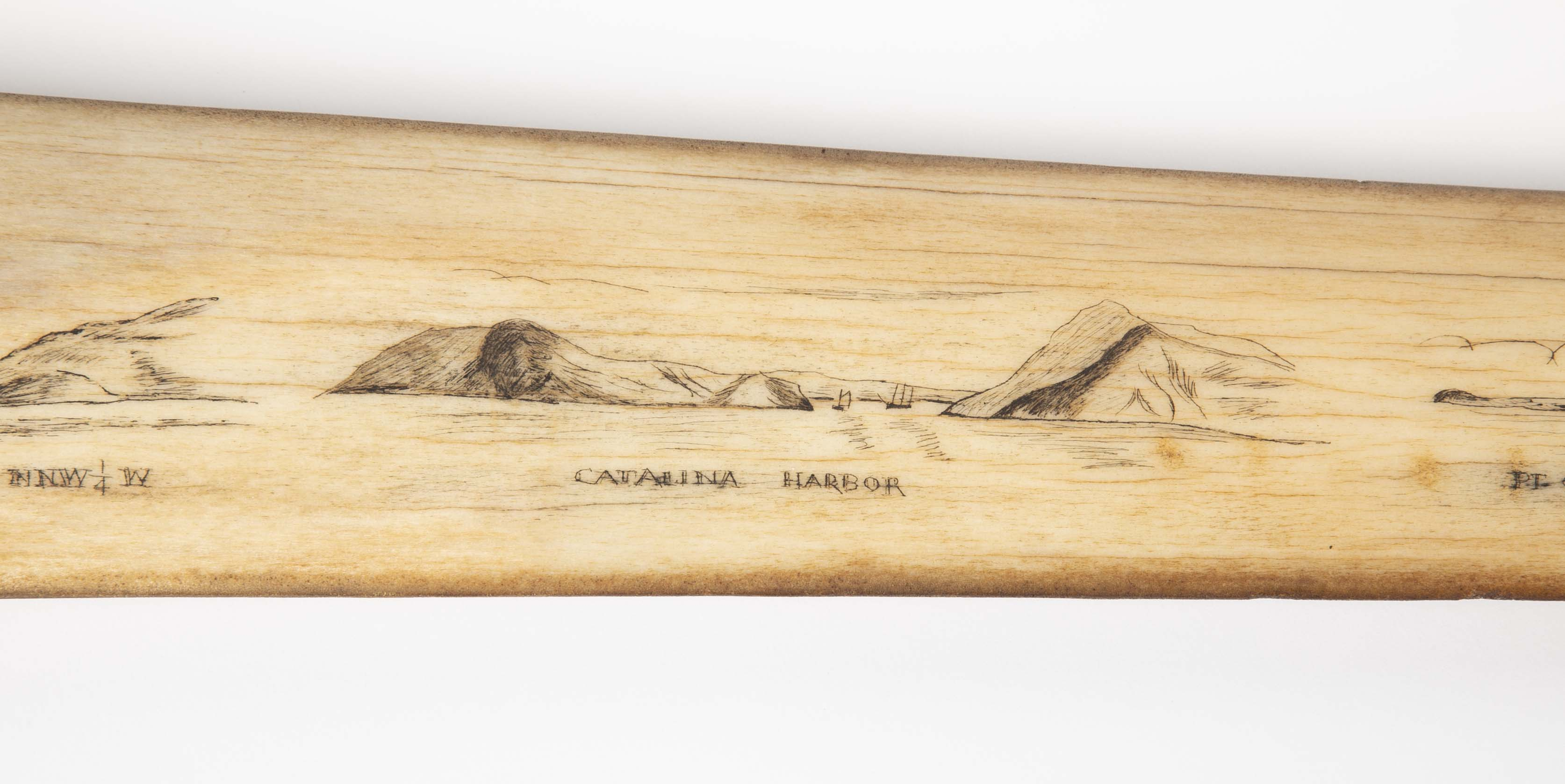 Antique Swordfish Bill with Scrimshaw Scenes of Landmarks from the San Francisco Area