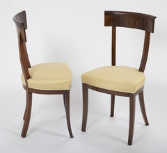 Pair of 19th Century French Side Chairs