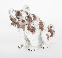 Dresden Figure of a Shaggy Dog