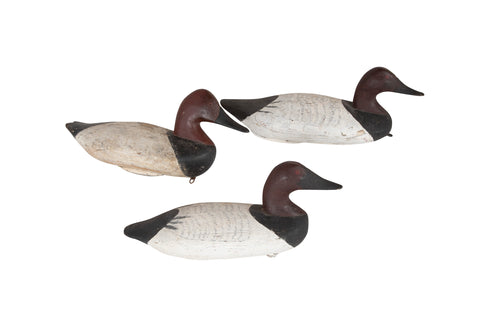 Set of 3 Maine Canvas Back Working Duck Decoys in Painted Wood