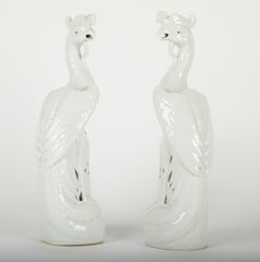 Pair of Porcelain Phoenix
