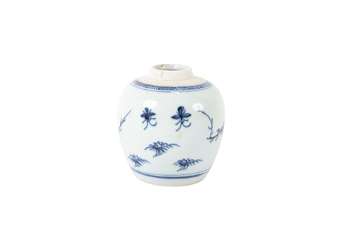 Blue and White Kangxi Jar