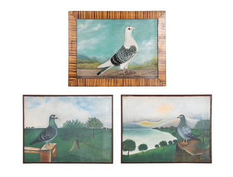 Unusual Collection of 3 Oil on Canvas Portraits of Racing Pigeons