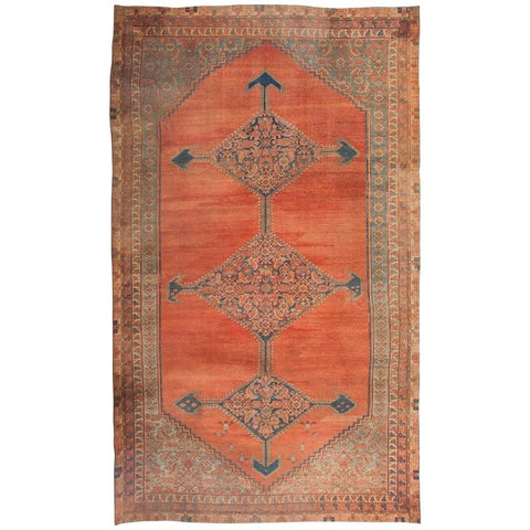 Bakshaish Carpet with Interesting Elements and Color