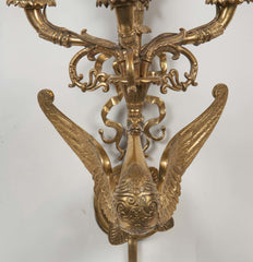 Pair of Gilt Bronze Swan Form Sconces