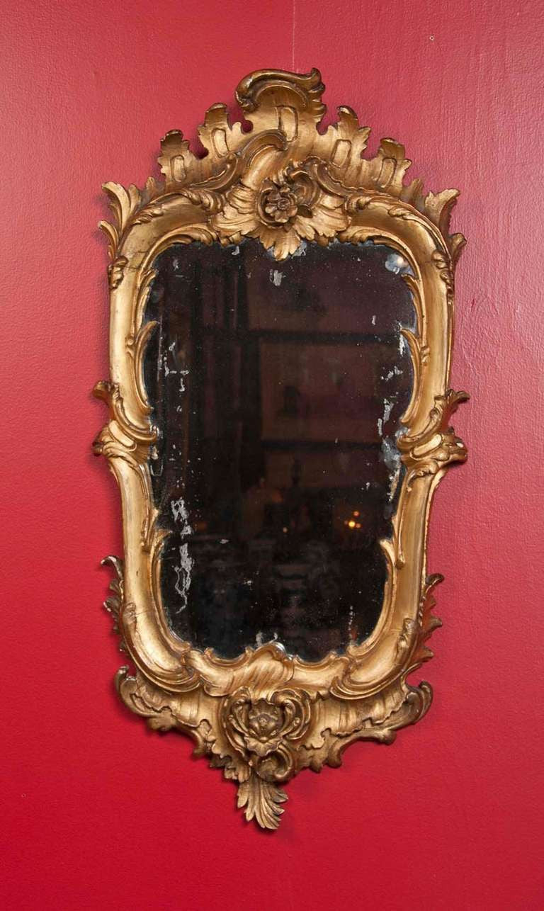 Pair of Gilt Florentine Mirrors