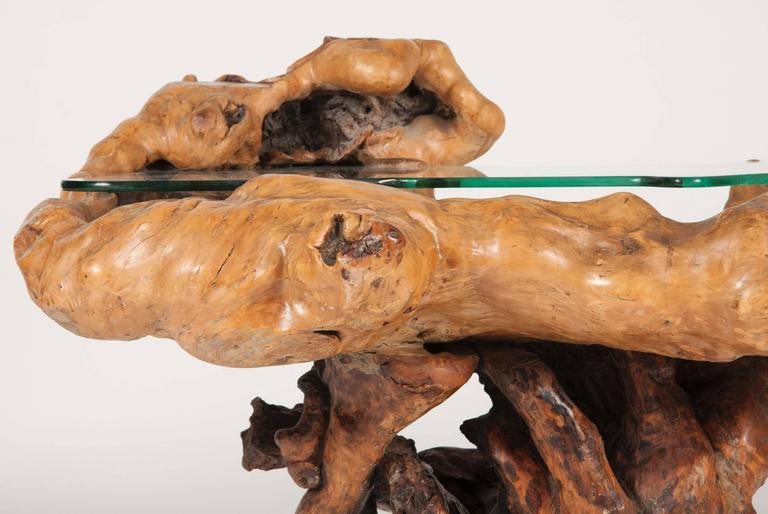 Impressive Ancient Chinese Scholar Root as Table