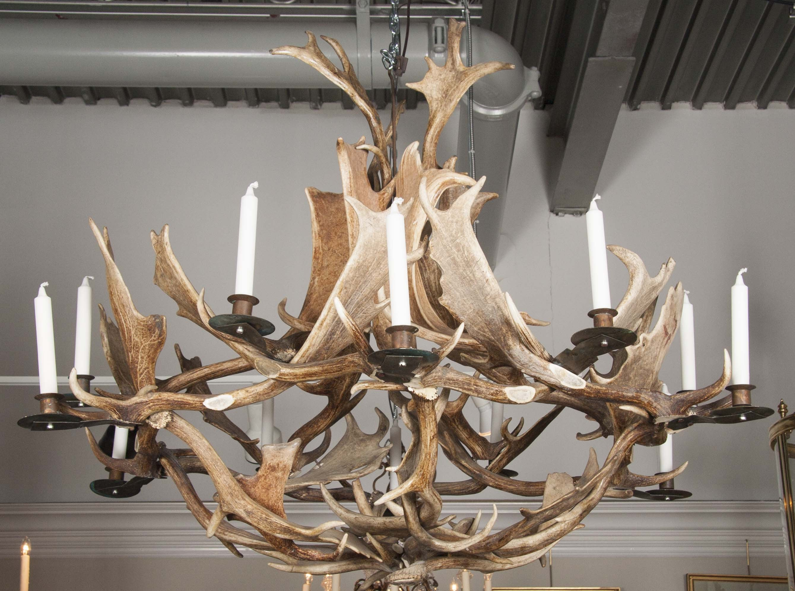 European Fallow Deer Antler Chandelier By Stan Hughes For Guinevere