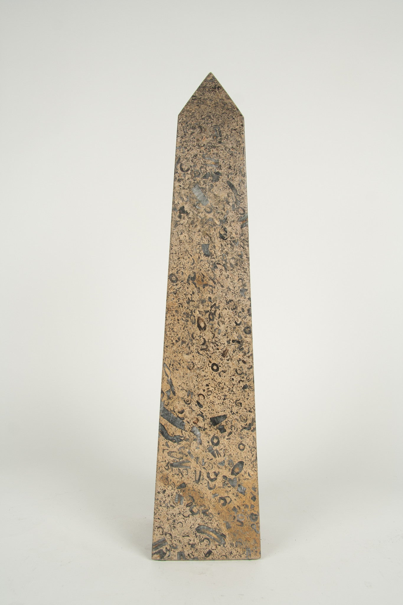 A Granite Obelisk with Fossilized Crustaceans