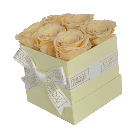 6 Piece Blossom Box -  Ivory Box - 18 Different Rose Colours!