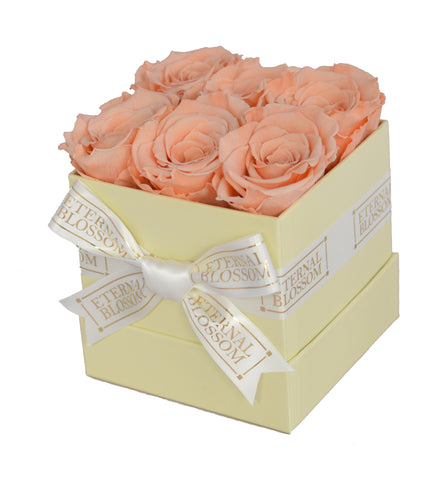 6 Piece Blossom Box - Ivory Box - 20 Year Lasting Rose Colours-Eternal Blossom - Year Lasting Infinity Roses