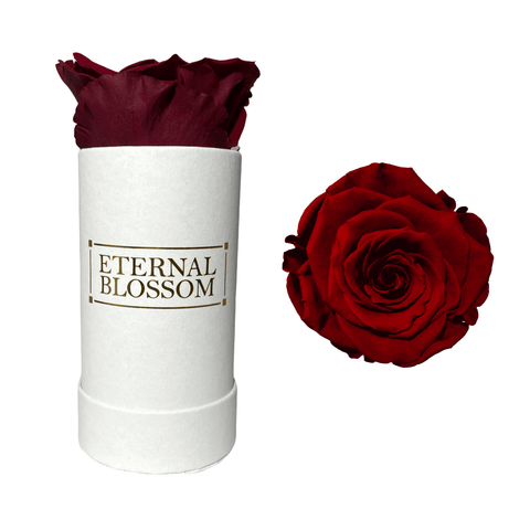 Individual Blossom Box - White Box – 24 Year Lasting Rose Colours-Eternal Blossom - Year Lasting Infinity Roses