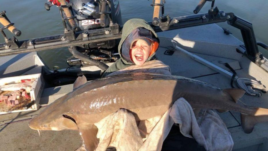9-Year-Old Tennessee Fisherman Catches 80 LB Sturgeon - TLO Outdoors