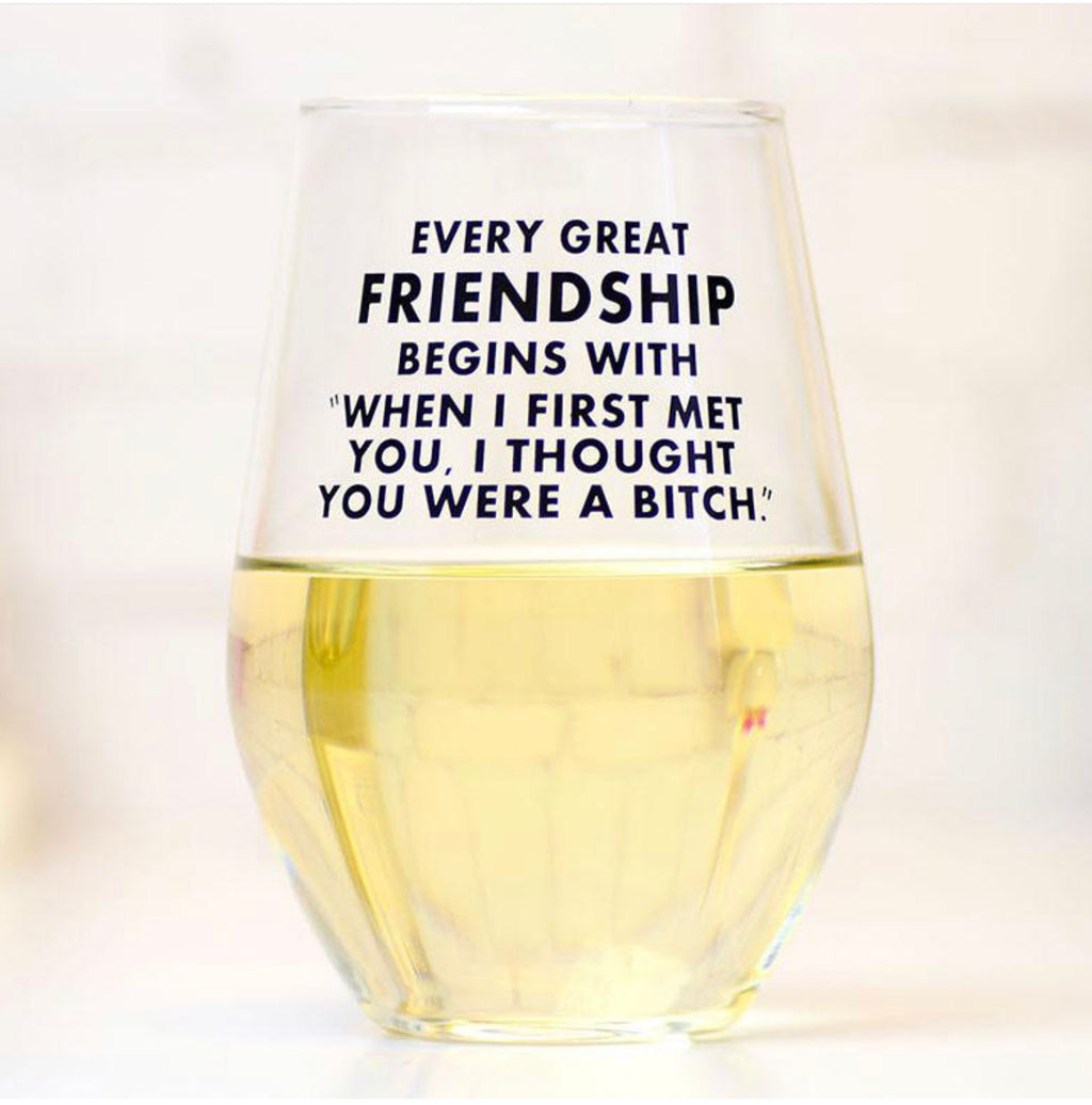 "Every great friendship begins with ""When we first met I thought you were a total bitch."" Wine Glass"