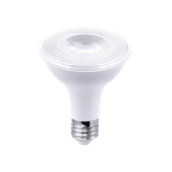 A single Par30 floodlight in white with a silver base.