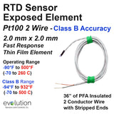 RTD Sensor Fast Response Exposed Element 2 Wire Pt100 Class B Accuracy