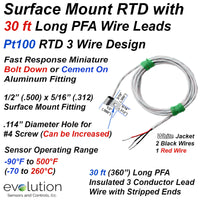 Bolt On or Cement Down Surface Mount RTD with 30 ft Long Wire Leads