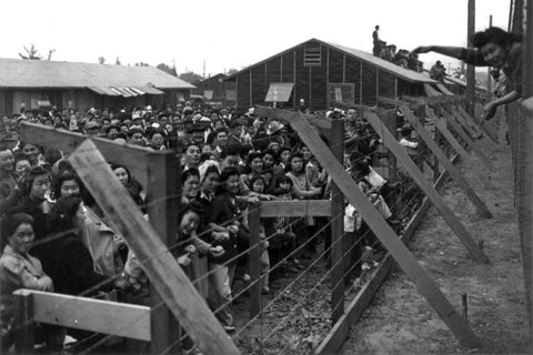Japanese Americans in Japanese Internment Camps