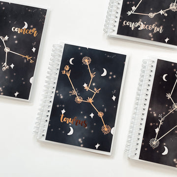 Sticker Reusable Book: Celestial + Zodiac Sign Foiled Sticker Book
