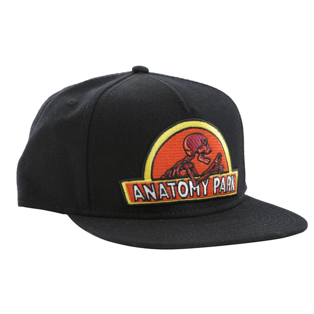 Anatomy Park Hat - Rick and Morty - TheMysteryShack