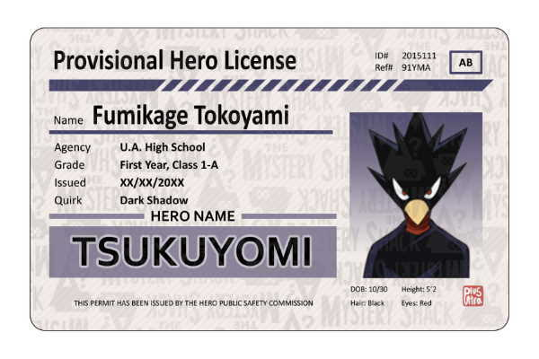 Provisional Hero Licenses
