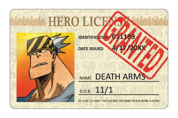 Pro Hero License