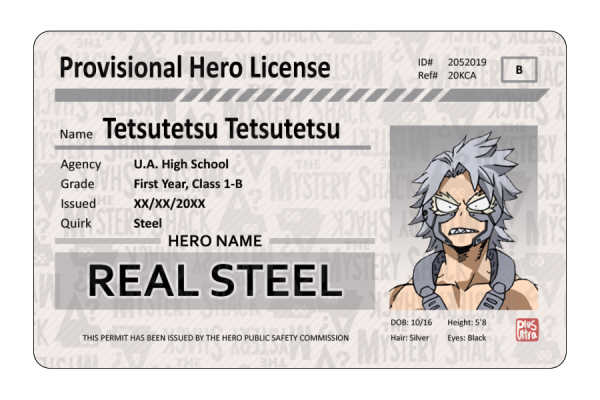 Provisional Hero License - Other