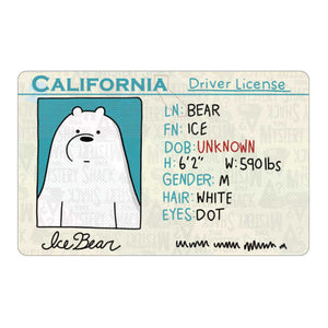 Ice Bear's License