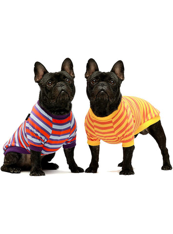 The Sunkissed Striped (2-Pack) Dog Tee