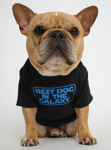 Best Dog In The Galaxy Dog Tee