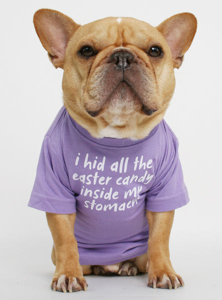 Hid The Easter Candy Dog Tee