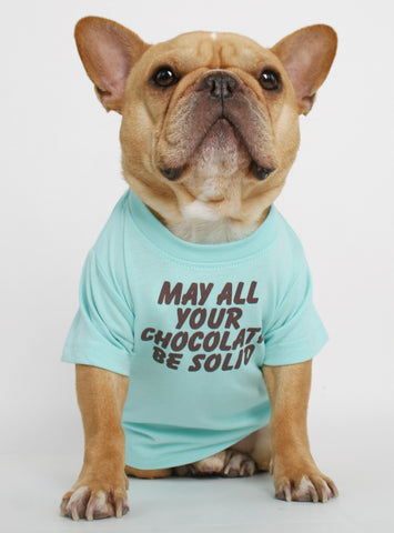 Solid Chocolate Dog Tee