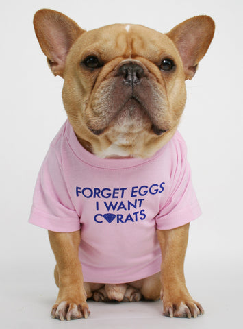 Forget Eggs Dog Tee