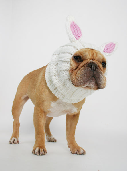 Knit Easter Bunny Dog Costume