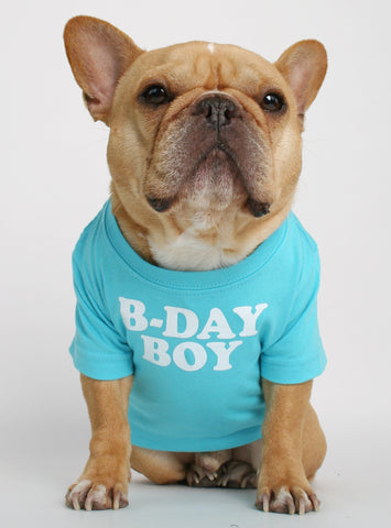Birthday Boy Dog Tee