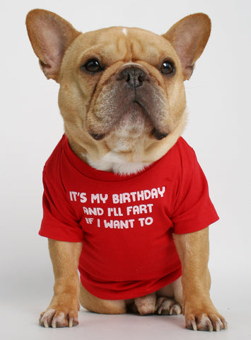 Its My Birthday Dog Tee
