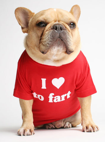 I HEART TO FART DOG TEE