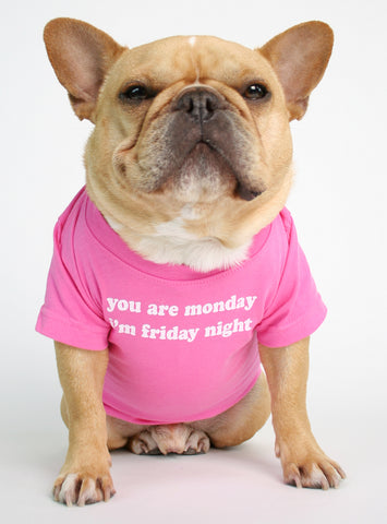 YOU ARE MONDAY DOG TEE