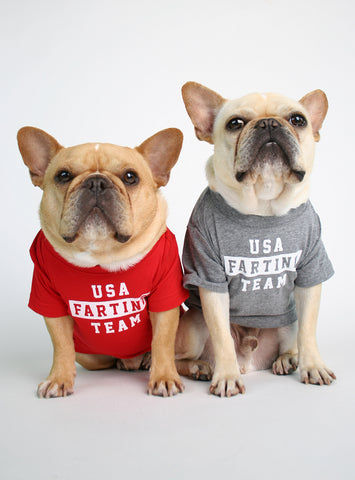 USA FARTING TEAM DOG TEE