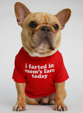 I Farted In Mom's Face Dog Tee