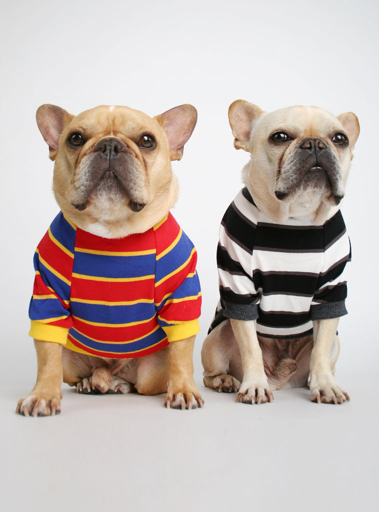 The Chroma Striped (2-Pack) Dog Tee