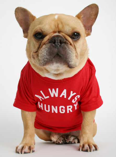 Always Hungry Dog Tee