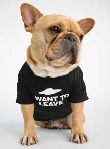 I WANT TO LEAVE DOG TEE