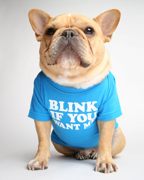 BLINK IF YOU WANT ME DOG TEE
